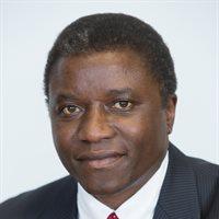 Dr Chaloka Beyani